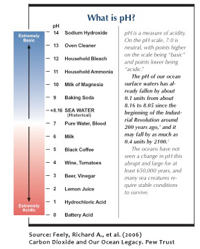 Acid_pH_Scale