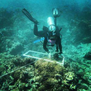 Amanda Diving in Palmyra