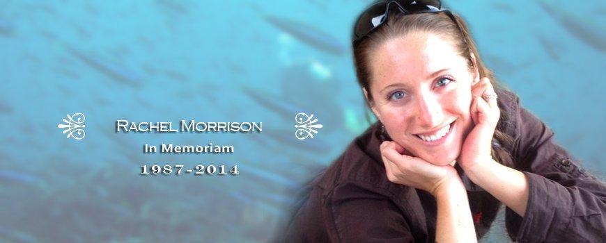 Rachel Morrison