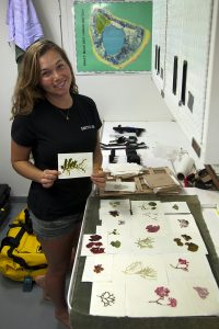 Samantha organizes algal pressings from the Global Reef Expedition's Herbarium