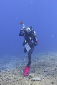 Benthic scientist, Samantha Clements, photographs an algal specimen for collection